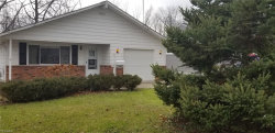Photo of 8380 Mentorwood Dr, Mentor, OH 44060 (MLS # 4061883)