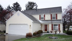 Photo of 6003 B Halle Farm Dr, Willoughby, OH 44094 (MLS # 4062882)