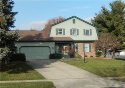 Photo of 870 Terraview Dr, Boardman, OH 44512 (MLS # 4063427)