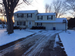 Photo of 8344 Waters Dr, Macedonia, OH 44056 (MLS # 4063515)