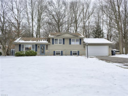 Photo of 6875 Colleen Dr, Boardman, OH 44512 (MLS # 4064017)