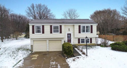 Photo of 7992 Gallowae Ct, Mentor, OH 44060 (MLS # 4064332)