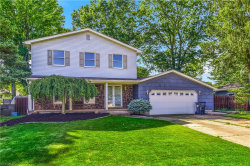 Photo of 3502 Johnson Farm Dr, Canfield, OH 44406 (MLS # 4064763)