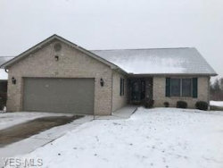 Photo of 3900 Mercedes Pl, Unit 23, Canfield, OH 44406 (MLS # 4064972)