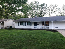 Photo of 8283 Findley Dr, Mentor, OH 44060 (MLS # 4065335)