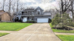 Photo of 9512 Catalpa Cir, Mentor, OH 44060 (MLS # 4065692)