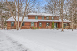 Photo of 8013 Buckthorn Dr, Mentor, OH 44060 (MLS # 4065948)