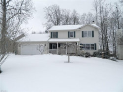 Photo of 2116 Demi Dr, Twinsburg, OH 44087 (MLS # 4066222)