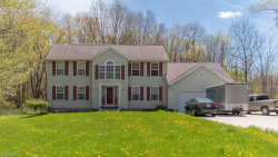 Photo of 5501 Clingan Rd, Struthers, OH 44471 (MLS # 4066329)