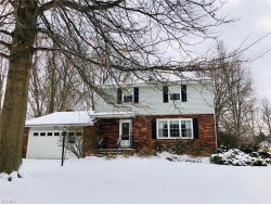 Photo of 7434 Mckinley St, Mentor, OH 44060 (MLS # 4066536)