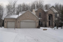 Photo of 9606 Windsor Way, Twinsburg, OH 44087 (MLS # 4066776)