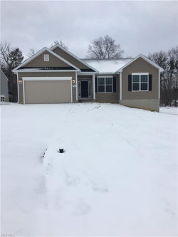 Photo of 9948 Forest Valley Ln, Streetsboro, OH 44241 (MLS # 4068505)