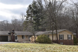 Photo of 31980 Jackson Rd, Chagrin Falls, OH 44022 (MLS # 4068639)