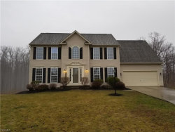 Photo of 10525 Crisfield Ct, Aurora, OH 44202 (MLS # 4068880)