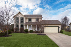 Photo of 10417 Belmeadow Dr, Twinsburg, OH 44087 (MLS # 4068952)