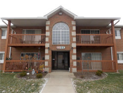 Photo of 10365 Glenway Dr, Unit 208, Twinsburg, OH 44087 (MLS # 4069120)