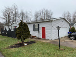 Photo of 1113 North Sagramore Dr, Streetsboro, OH 44241 (MLS # 4069380)