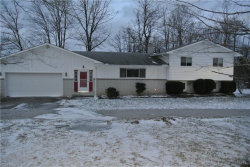 Photo of 3323 Pioneer Trl, Mantua, OH 44255 (MLS # 4069627)