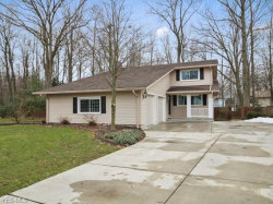 Photo of 8460 Morningside Dr, Poland, OH 44514 (MLS # 4070595)