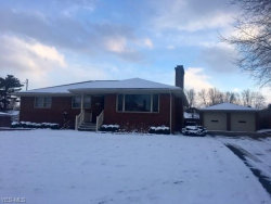 Photo of 600 Como St, Struthers, OH 44471 (MLS # 4074726)
