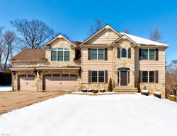 Photo of 7974 Butterfly St, Concord, OH 44077 (MLS # 4076261)