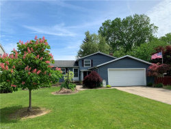 Photo of 9949 Patton St, Twinsburg, OH 44087 (MLS # 4076490)