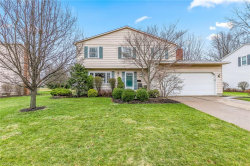 Photo of 6251 Foxwood Ct, Mentor, OH 44060 (MLS # 4078256)
