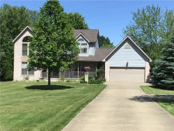 Photo of 10351 Lincoln Rd, Canfield, OH 44406 (MLS # 4079541)