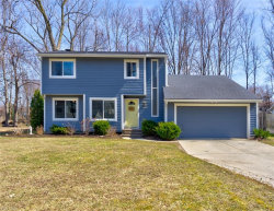 Photo of 6807 Palmerston Dr, Mentor, OH 44060 (MLS # 4081232)