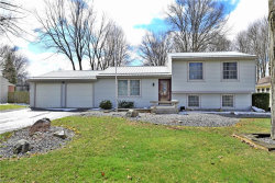 Photo of 284 Stahl Ave, Cortland, OH 44410 (MLS # 4081522)