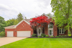 Photo of 3035 Alling Dr, Twinsburg, OH 44087 (MLS # 4082765)