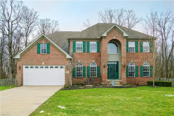Photo of 9356 Wallingford Dr, Twinsburg, OH 44087 (MLS # 4082958)
