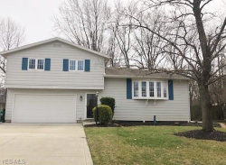 Photo of 7198 Andover Dr, Mentor, OH 44060 (MLS # 4084859)