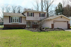 Photo of 11178 Heritage Dr, Twinsburg, OH 44087 (MLS # 4087038)
