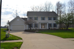 Photo of 10296 Merriam Ln, Twinsburg, OH 44087 (MLS # 4088356)