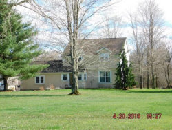 Photo of 4078 Countryview Ln, Rock Creek, OH 44084 (MLS # 4088734)