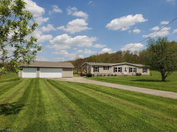Photo of 8701 State Route 82, Garrettsville, OH 44231 (MLS # 4093062)