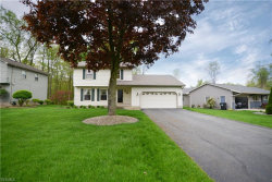 Photo of 4889 Warwick Dr South, Canfield, OH 44406 (MLS # 4093099)