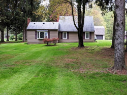 Photo of 11515 State Route 44, Mantua, OH 44255 (MLS # 4093756)