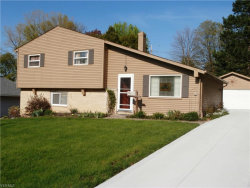 Photo of 5429 Karen Isle Dr, Willoughby, OH 44094 (MLS # 4093785)