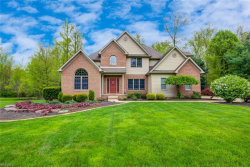 Photo of 6819 Pacifica Dr, Poland, OH 44514 (MLS # 4094115)