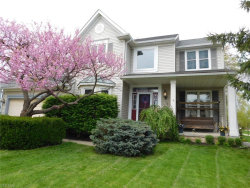 Photo of 2849 Sikes Ln, Twinsburg, OH 44087 (MLS # 4094476)