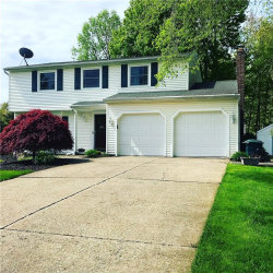 Photo of 11840 Christian Ave, Concord, OH 44077 (MLS # 4094559)