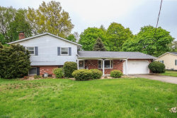 Photo of 8966 Jackson St, Mentor, OH 44060 (MLS # 4096265)