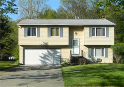 Photo of 11245 Heritage Dr, Twinsburg, OH 44087 (MLS # 4098234)