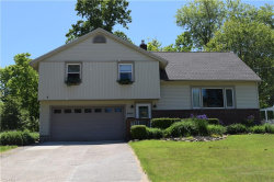 Photo of 9413 Fairfield Dr, Twinsburg, OH 44087 (MLS # 4099235)