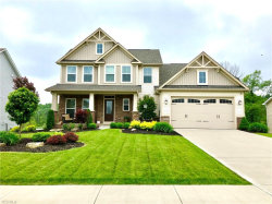 Photo of 7957 Megan Meadow Dr, Twinsburg, OH 44236 (MLS # 4102177)