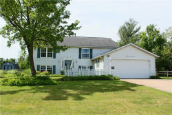 Photo of 10304 Belleau Dr, Twinsburg, OH 44087 (MLS # 4104551)
