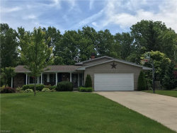 Photo of 6391 Cambridge Park Dr, Mentor, OH 44060 (MLS # 4104599)