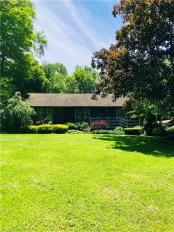 Photo of 4234 Pioneer Trl, Mantua, OH 44255 (MLS # 4106245)